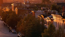 Tree-lined row homes in Baltimore, MD