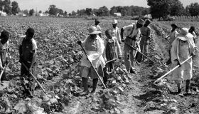 African-American Workers