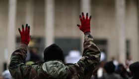 Freddie Gray hands up protests