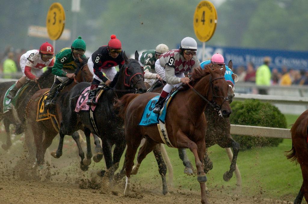 Horse Racing - Preakness