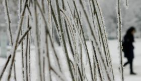 A girl walks by frost-covered trees in P